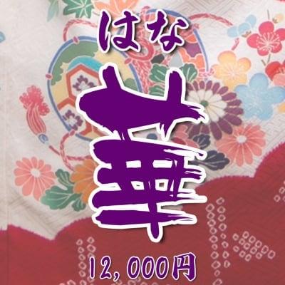 【現地払い】 お宮参り向け・初宮参り お祝い着・熨斗目(のしめ)レンタル 華(はな)