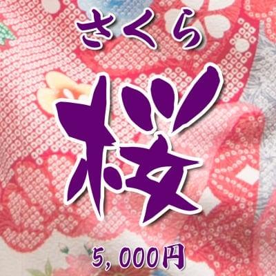 【現地払い】 お宮参り向け・初宮参り お祝い着・熨斗目(のしめ)レンタル 桜(さくら)