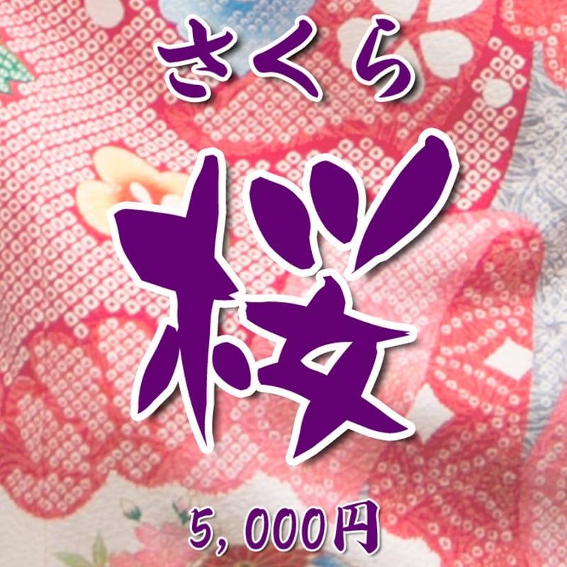 【現地払い】 お宮参り向け・初宮参り お祝い着・熨斗目(のしめ)レンタル 桜(さくら)のイメージその1
