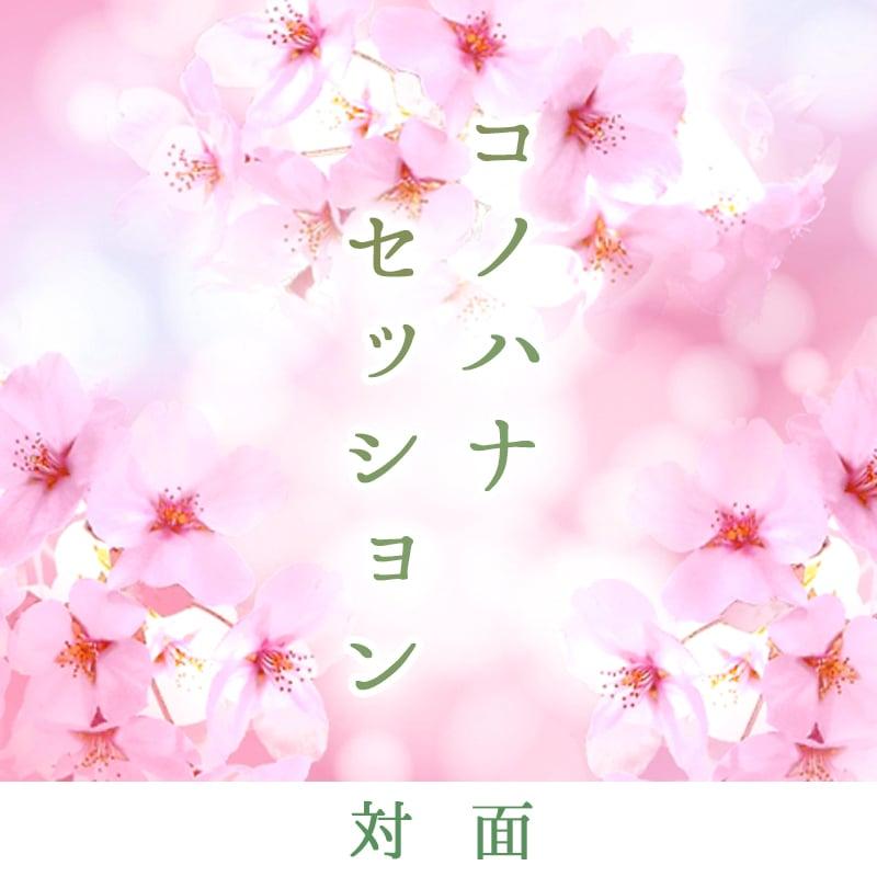 コノハナセッション【対面】(エネルギーアップ + リーディング)80分 16,800円のイメージその2
