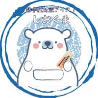 【3000円】熊谷発!おいしく食べて熱中症対策になる!!塩入アイスキャンディー『しおくま』商品化応援チケット