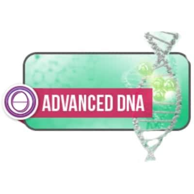 応用DNAセミナー【神奈川県川崎市】Spring of Creation〜創造の泉〜