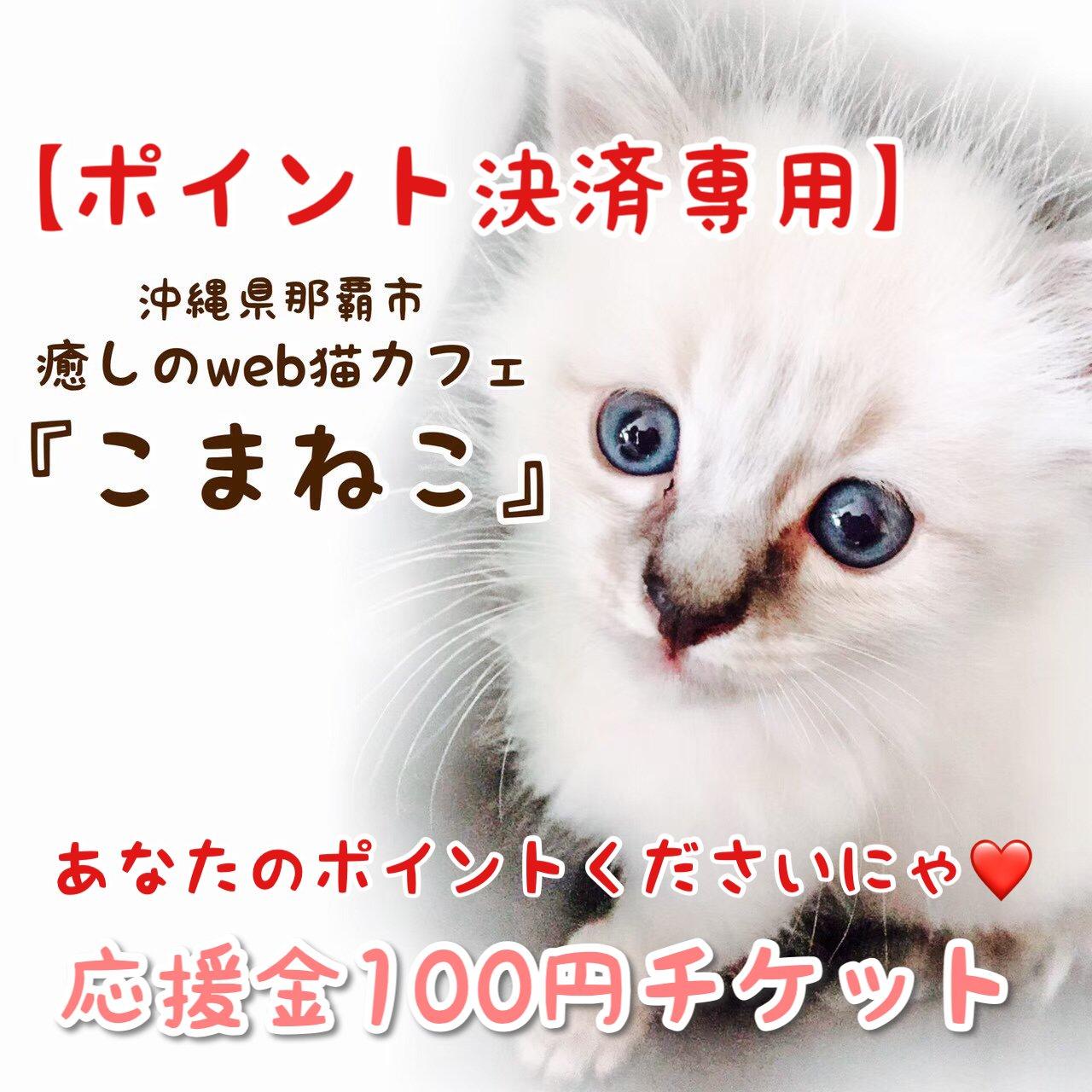 【ポイント決済専用】沖縄の保護猫を幸せにするための応援チケットのイメージその1