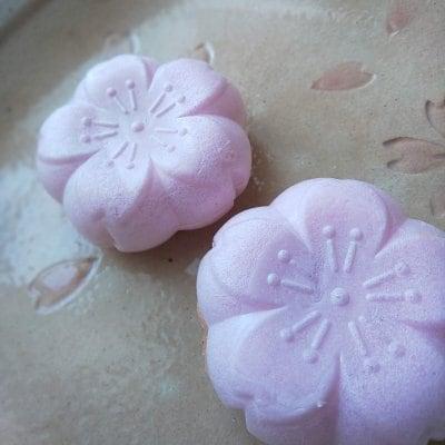 桜もなか6個入り。薄いピンクが春の希望を感じさせる桜の花型もなか種(皮)に銅釜直火焼き自家製餡をつめた一品。花見気分をお家でどうぞ!新生活のご挨拶や就職、合格の報告のお持たせにも最適。
