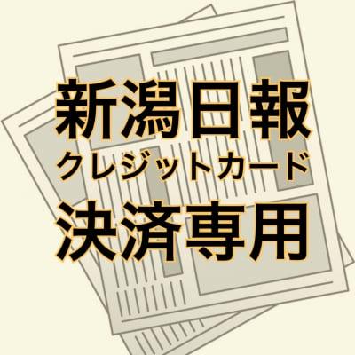 新潟日報朝刊&大人プラス6ヶ月前払い クレジットカード決済専用