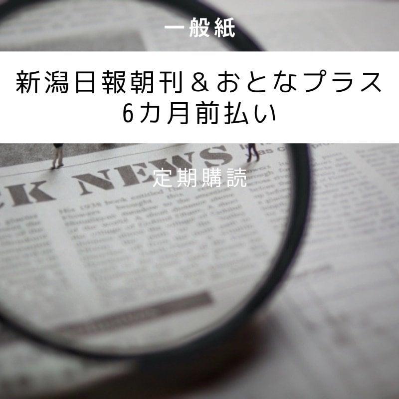 新潟日報朝刊&大人プラス6ヶ月前払い クレジットカード決済専用のイメージその1