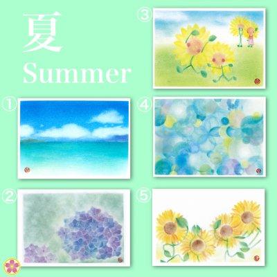 ポストカード5枚セット【夏】定型(郵便)はがきサイズ:100mm×148mm5枚セット