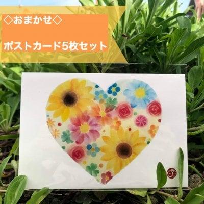 ◆プレゼント付き◆お任せポストカード5枚セット定型(郵便)はがきサイズ:100mm×148mm5枚セット