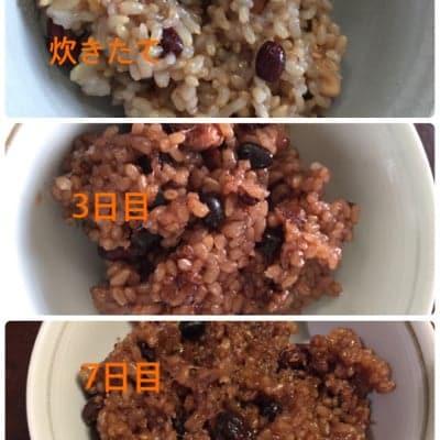 酵素玄米セット(通常購入)【2020年 新米】