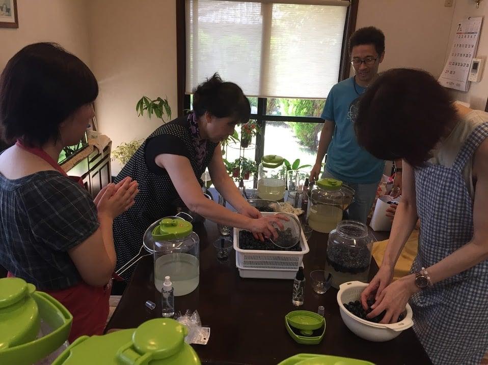 《3月21日(日)午後》発酵エキス教室「よもぎ」【現地払い】のイメージその3