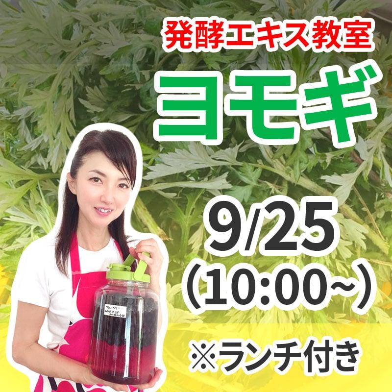 《9月25日 10:00》発酵エキス教室「ヨモギ」※ランチ付き 薬草の女王【現地払い】のイメージその1