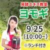 《9月25日 10:00》発酵エキス教室「ヨモギ」※ランチ付き 薬草の女王【現地払い】