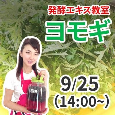 《9月25日 14:00》発酵エキス教室「ヨモギ」薬草の女王【現地払い】