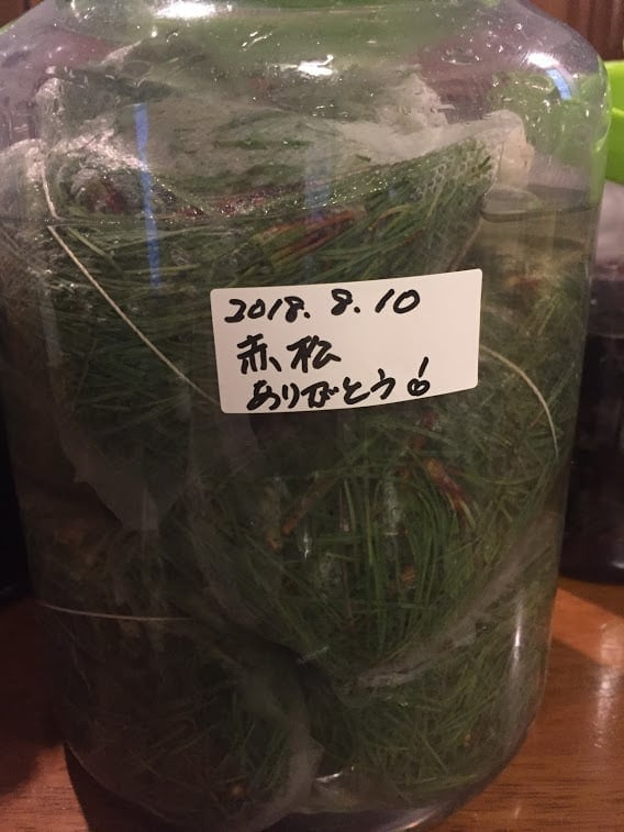 《10月27日 14:00》発酵エキス教室「アカマツ」【現地払い】のイメージその2