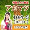 《10月4日,5日 10:00》発酵エキス教室「アカマツ」※ランチ付き【現地払い】