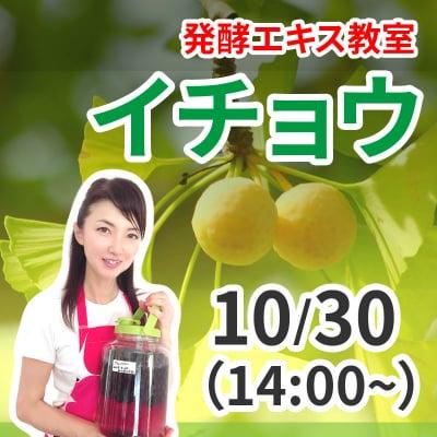 《10月30日 14:00》発酵エキス教室「イチョウ」【現地払い】