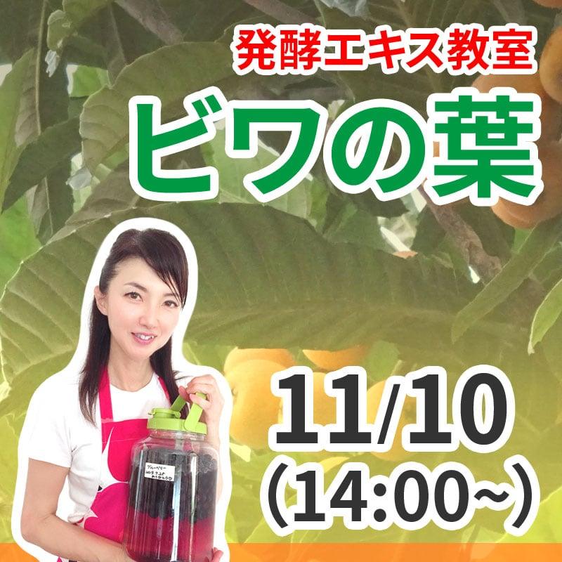 《11月10日 14:00》発酵エキス教室「ビワの葉」【現地払い】のイメージその1