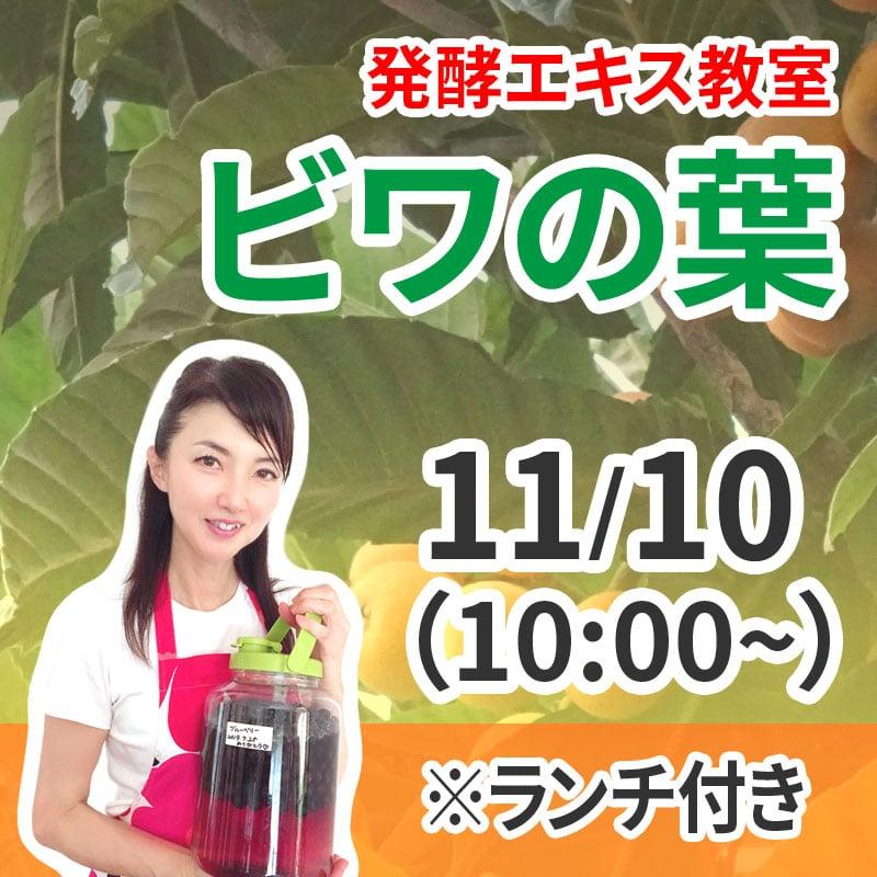 《11月10日 10:00》発酵エキス教室「ビワの葉」ランチ付き【現地払い】のイメージその1