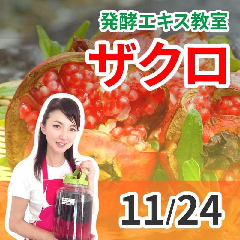 11月24日(日)発酵エキス教室ザクロ【現地払い】のイメージその1