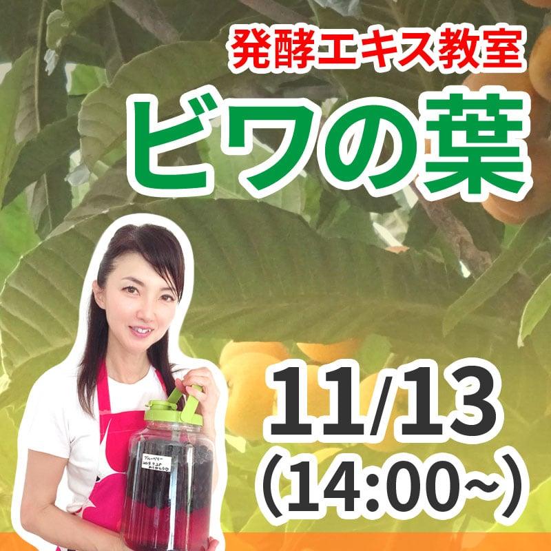 《11月13日 14:00》発酵エキス教室「ビワの葉」【現地払い】のイメージその1