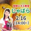 《2月16日(日)午後》発酵エキス教室「じゃばら」【現地払い】