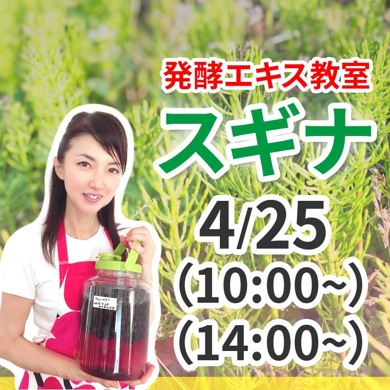 《4月25日(土)》発酵エキス教室「驚異の薬草スギナ」【現地払い】のイメージその1