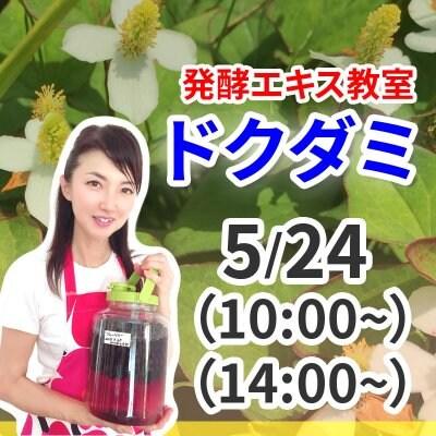 《5月24日(日)》発酵エキス教室(驚異の薬草 ドクダミ)【現地払い】