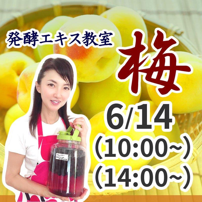 《6月14日(日)》発酵エキス教室 無農薬南高梅 (うめ) 【現地払い】のイメージその1