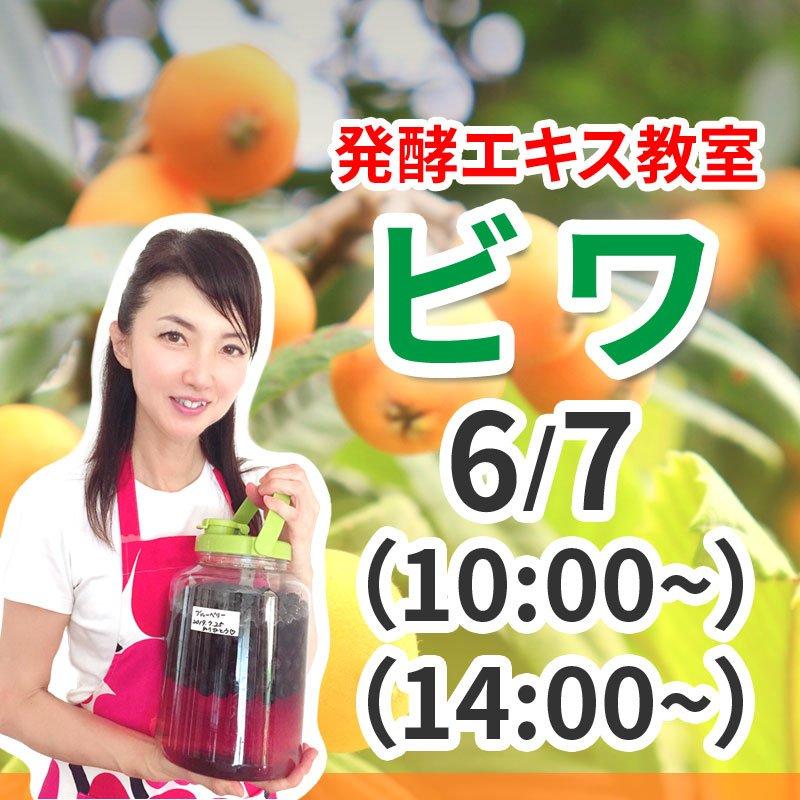 《6月7日(日)》発酵エキス教室 無農薬ビワ  【現地払い】のイメージその1