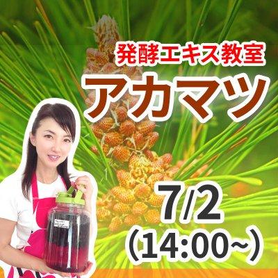 《7月2日(木)》発酵エキス教室「アカマツ」午後ランチなし【現地払い】