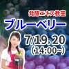 《7月19日(日)20日(月)》発酵エキス教室「無農薬ブルーベリー」【現地払い】