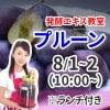 ランチ付き《8月1日(土)2日(日)》発酵エキス教室「減農薬プルーン」【現地払い】