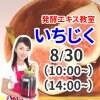 《8月30日(日)》発酵エキス教室「いちじく」無農薬【現地払い】