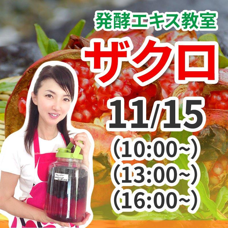11月15日(日)発酵エキス教室ザクロ【現地払い】のイメージその1