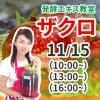 11月15日(日)発酵エキス教室ザクロ【現地払い】