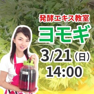 《3月21日(日)午後》発酵エキス教室「よもぎ」【現地払い】
