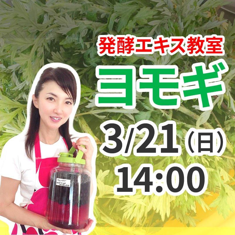 《3月21日(日)午後》発酵エキス教室「よもぎ」【現地払い】のイメージその1