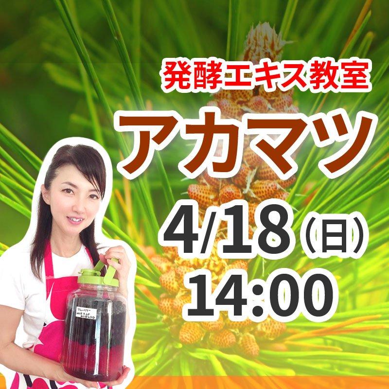 《4月18日(日)午後》発酵エキス教室「アカマツ」【現地払い】のイメージその1