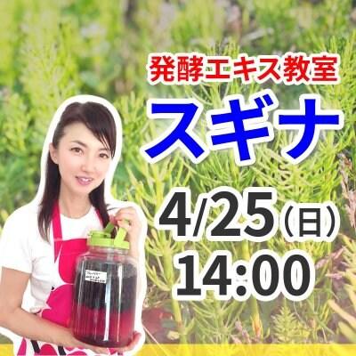 《4月25日(日)午後》発酵エキス教室「驚異の薬草スギナ」【現地払い】