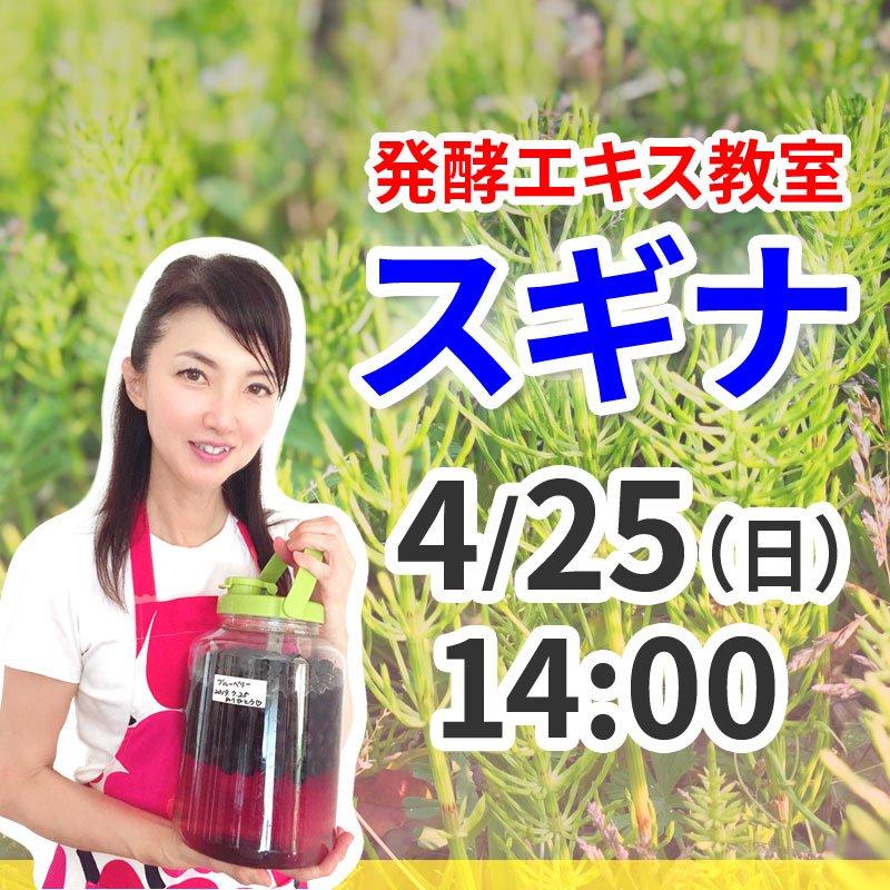 《4月25日(日)午後》発酵エキス教室「驚異の薬草スギナ」【現地払い】のイメージその1