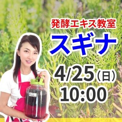 《4月25日(日)午前》発酵エキス教室「驚異の薬草スギナ」【現地払い】