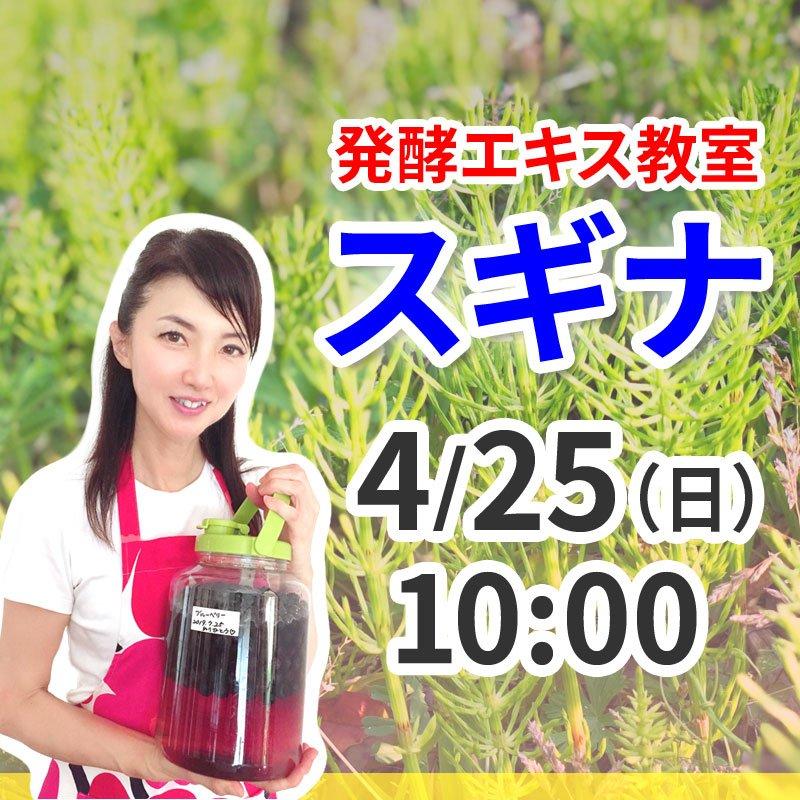 《4月25日(日)午前》発酵エキス教室「驚異の薬草スギナ」【現地払い】のイメージその1