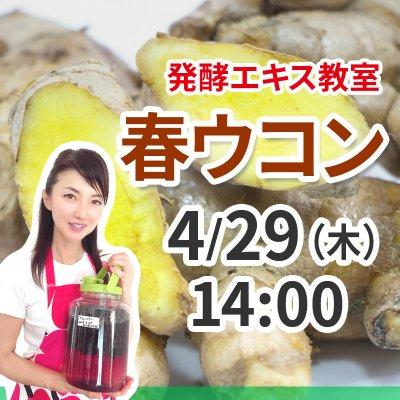 《4月29日(木)午後》発酵エキス教室「春ウコン」【現地払い】