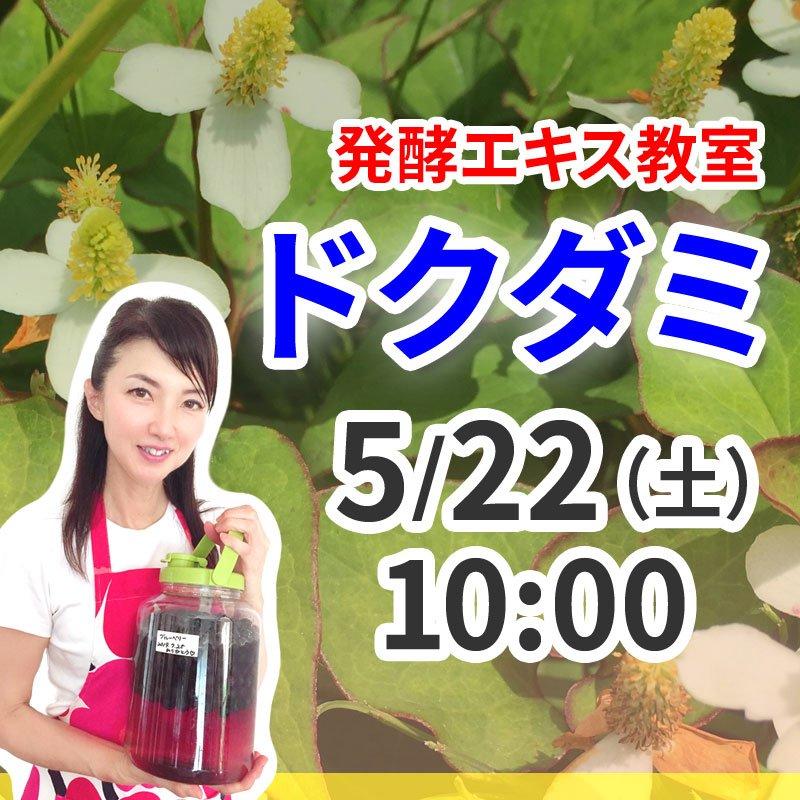 《5月22日(土)午前》発酵エキス教室(驚異の薬草 ドクダミ)【現地払い】のイメージその1