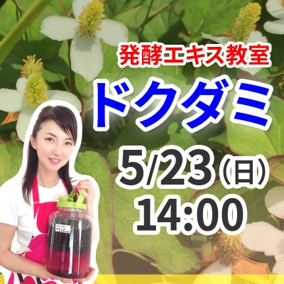 《5月23日(日)午後》発酵エキス教室(驚異の薬草 ドクダミ)【現地払い】