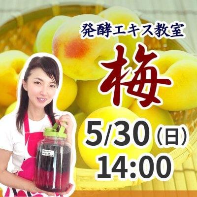 《5月30日(日)午後》発酵エキス教室 梅 (うめ) 【現地払い】