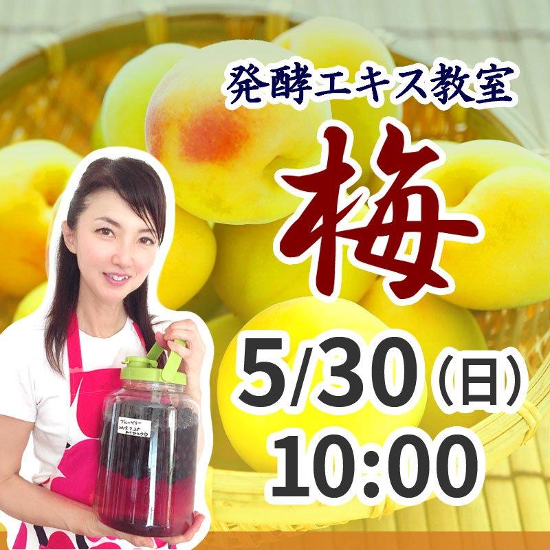 《5月30日(日)午前》発酵エキス教室 梅 (うめ) 【現地払い】のイメージその1