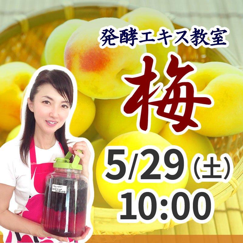 《5月29日(土)午前》発酵エキス教室 梅 (うめ) 【現地払い】のイメージその1