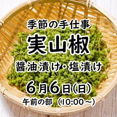 《6月6日(日)》 季節の手仕事 実山椒【現地払いのみ】