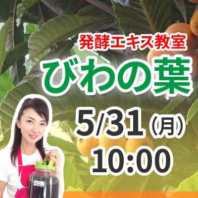 《5月31日(日)午前》発酵エキス教室 枇杷の葉 【現地払い】